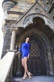 Ung härlig brunettkvinna för stående i den blåa klänningen som poserar mot bakgrunden av en gammal slott i den gotiska stile arkivfoto