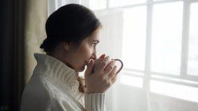 Ung härlig brunettkvinna i tröja som dricker koppen kaffe nära fönstret stock video