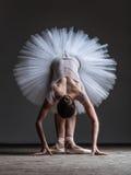 Ung härlig dansare som poserar i studio Royaltyfria Foton