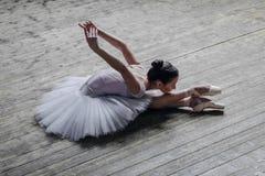 Ung härlig dansare som poserar i studio Arkivfoto