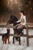 Ung härlig kvinna med ståenden för hund för häst och för tysk herde den utomhus- royaltyfria foton