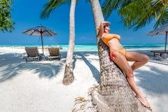 Ung härlig kvinna som sitter på palmträdet arkivfoto