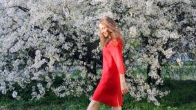 Ung härlig kvinna som tycker om lukten av det blommande trädet på en solig dag stock video