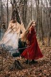 Ung häxa i höstskogen royaltyfri bild