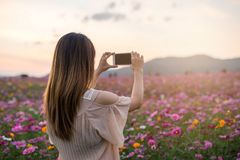 Ung handelsresande som tar fotoet som blommar blommor royaltyfri bild