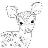Ung hjortstående för illustration på vit bakgrund Vektorhanden som dras av, behandla som ett barn hjortar med lättrogna ögon vektor illustrationer
