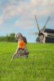 Ung härlig flicka i grönt fält Arkivfoton