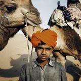 Ung indisk pojke med kamelökenbegrepp arkivbild