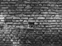 Ung indisk pojke, Pushkar, Rajasthan arkivbild