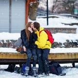 Ung kamrat och flicka som kysser på isbanan i Trakai royaltyfri foto