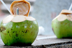 Ung kokosnötdrink Arkivfoto