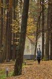 Ung kvinna, övning, natur, höst, livsstil, skog fotografering för bildbyråer