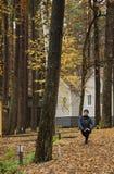 Ung kvinna, övning, natur, höst, livsstil, skog arkivfoton