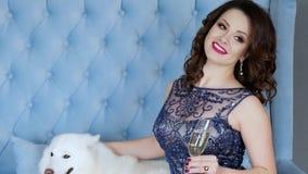 Ung kvinna för stående med smink i den near hunden för chic klänning som poserar på kamera med vinglaset på soffan lager videofilmer