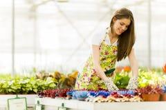 Ung kvinna i blommaträdgård Royaltyfri Fotografi