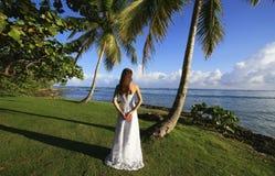 Ung kvinna i bröllopsklänninganseende vid palmträdet Arkivfoton