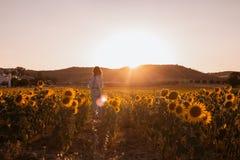 Ung kvinna i ett fält av solrosor från hennes baksida på solnedgången royaltyfria foton
