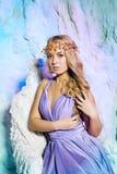 Ung kvinna i prinsessaklänning på en bakgrund av en vinterfe Fotografering för Bildbyråer