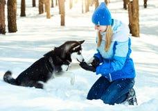 Ung kvinna i snöig skog för vinter som går med hennes hund i en vinterdag Kamratskaphusdjur och människa royaltyfri fotografi