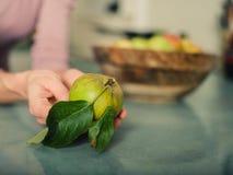 Ung kvinna med äpplen i kök arkivbild