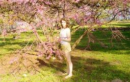 Ung kvinna med det rosa trädet Fotografering för Bildbyråer