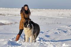 Ung kvinna med en stor hund Solig vinterdag Arkivbild