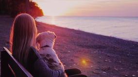 Ung kvinna med hennes hund längs att beundra solnedgången stock video