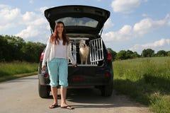 Ung kvinna och en hund på en bil Arkivbilder