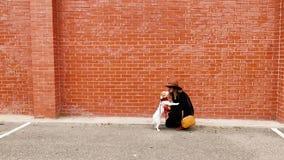 Ung kvinna och hennes gullig liten hund som har utomhus gyckel Älskvärd hund som kysser hennes ägare Dag stads- och stad stock video