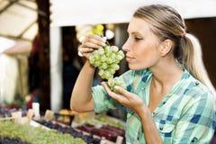 Ung kvinna på den gröna marknaden royaltyfri foto