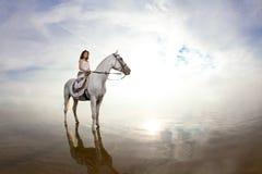 Ung kvinna på en häst Hästryggryttare, kvinnaridninghäst på b royaltyfria bilder