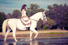 Ung kvinna på en häst Hästryggryttare, kvinnaridninghäst på b royaltyfri bild