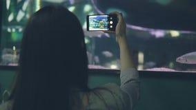 Ung kvinna som använder mobiltelefonen för video skjuta fisksimning i oceanarium stock video