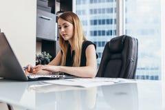 Ung kvinna som arbetar på bärbara datorn som studerar finansiella data och statistik av företaget royaltyfri fotografi