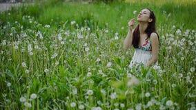 Ung kvinna som blåser maskrosen på ett sommarfält stock video