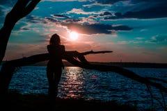 Ung kvinna som blir nära trädet som håller ögonen på härliga sceniska solar royaltyfri foto