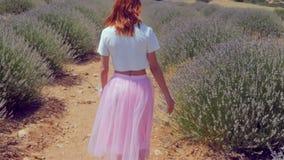 Ung kvinna som går i lavendelfältet arkivfilmer