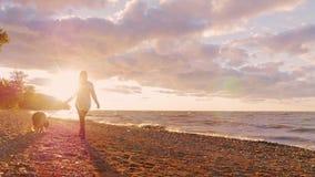 Ung kvinna som går med en hund på kusten av Lake Ontario på solnedgången arkivfilmer
