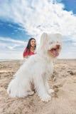 Ung kvinna som går med hunden arkivbild