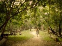Ung kvinna som går på den mystiska banan in i förtrollad skog Arkivbilder