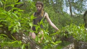 Ung kvinna som går på en trädfilial stock video