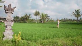 Ung kvinna som går till och med risfält arkivfilmer