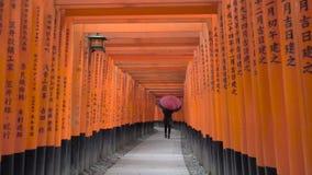 Ung kvinna som går till och med Torii portar med paraplyet lager videofilmer