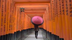 Ung kvinna som går till och med Torii portar med paraplyet stock video