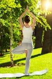 Ung kvinna som gör yoga i parkera i morgonen Royaltyfri Foto