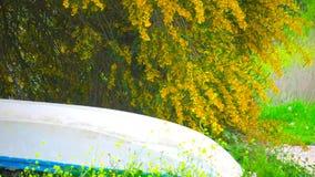 Ung kvinna som kör med blomman stock video