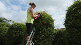Ung kvinna som klipper en häck Fotografering för Bildbyråer