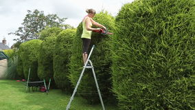 Ung kvinna som klipper en häck Royaltyfria Foton