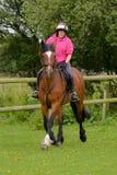 Ung kvinna som rider hennes häst i ett fält arkivfoto