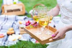 Ung kvinna som rymmer en maträtt med vitt vin för exponeringsglas på picknicksumman arkivbilder